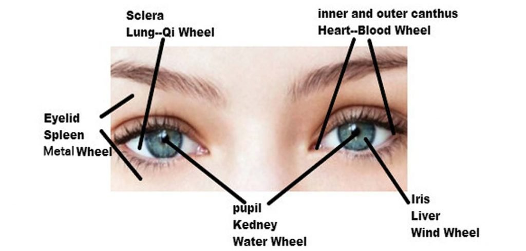 ophthalmologic diseases with Traditional Chinese Medicine